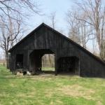 Kentucky Farm June 2011