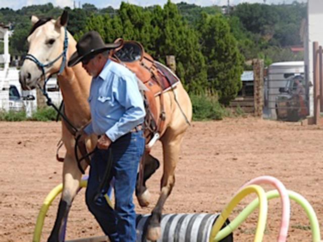 Mule Day in Santa Fe