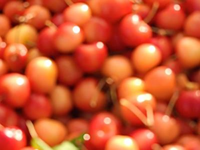 santa_fe_farmers_market_3