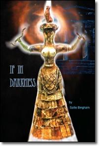 If In Darkness (2010) - Sallie Bingham