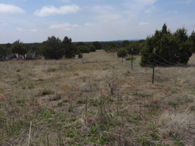 Apache Mesa - Landscape
