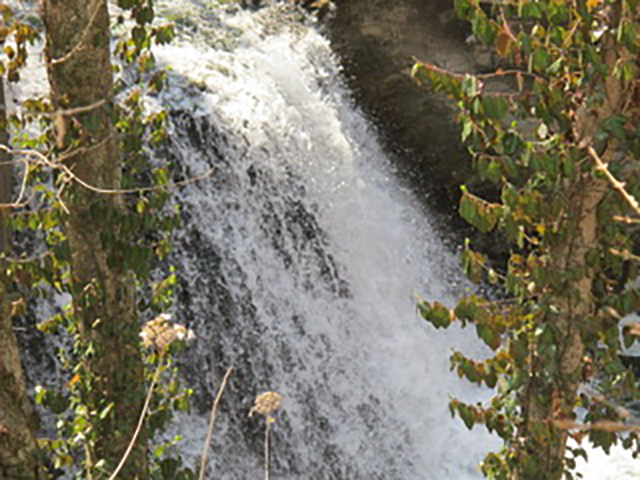 Waterfall at Wolf Pen Mill, Kentucky