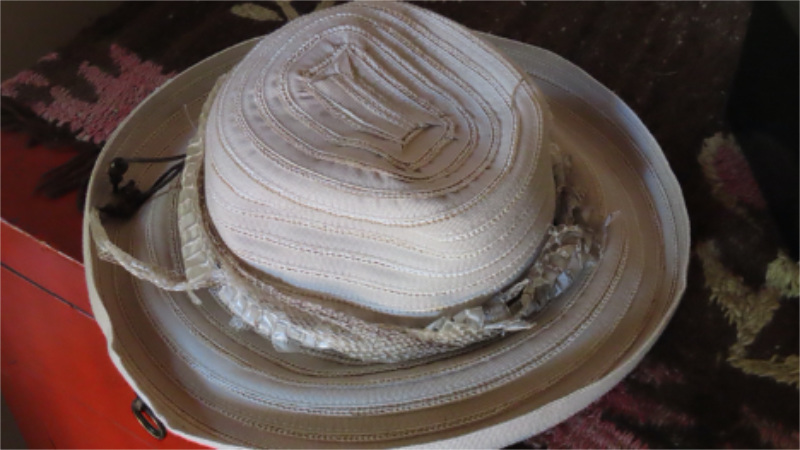 Photo of my hat, with snakeskin