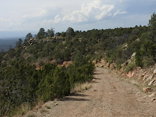 The road from the mesa