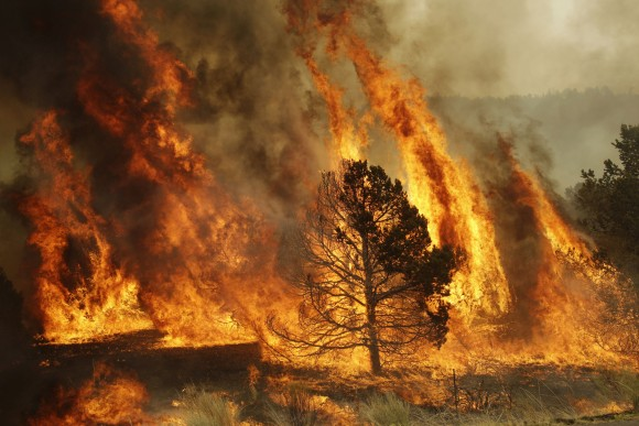 Wildfires In New Mexico